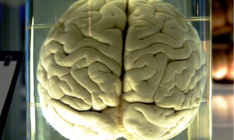 Using neuroscience to prevent drug addiction among teenagers